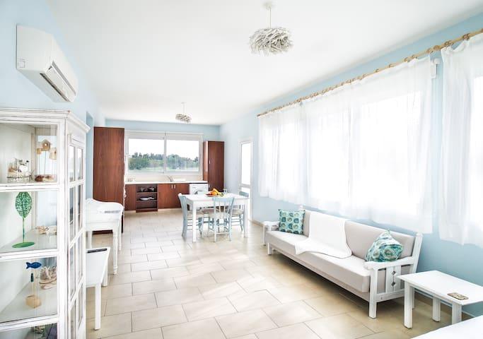 Alcyone Beach House - Oroklini - Villa
