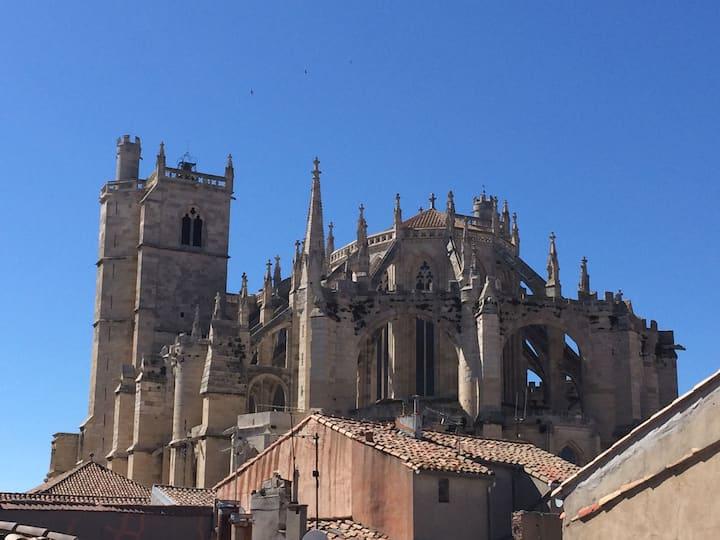 Centre historique studio vue superbe cathédrale