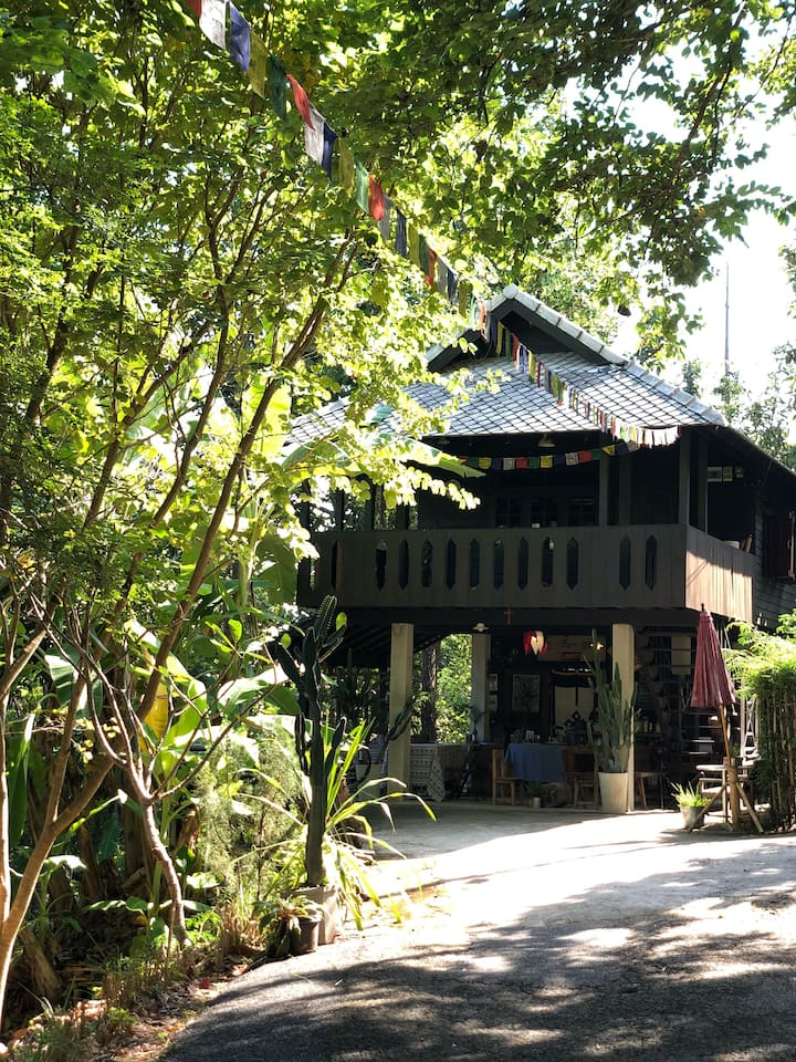 Raaw House