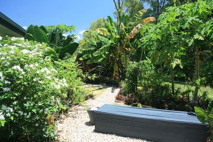 Quiet Tropical Oasis 3