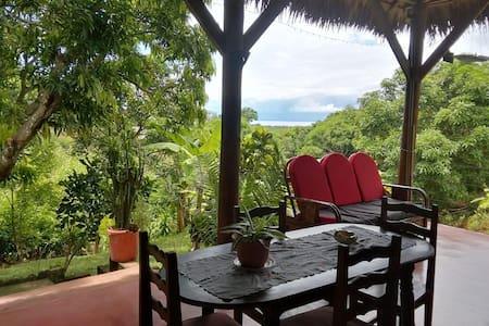 Maison vue mer tropical