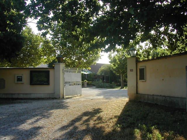 la Pastourello 1 - Saint-Martin-de-Crau - Pis