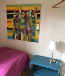 Lille hyggeligt værelse i Odense C - Odense