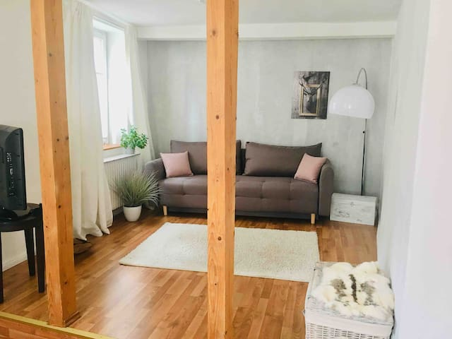 CASA NORDICA 2-Zimmer Apartment + NETFLIX