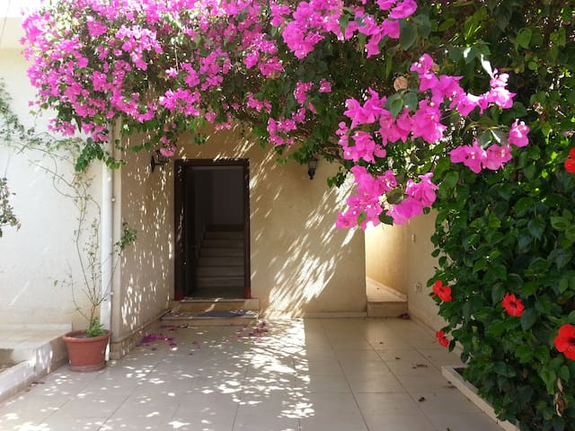 Lovely furnished flat the top of a villa - Tunis - Ariana