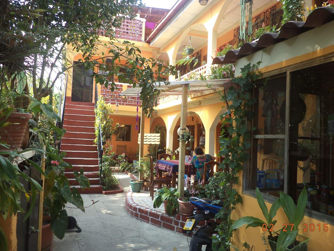 patio, jardin
