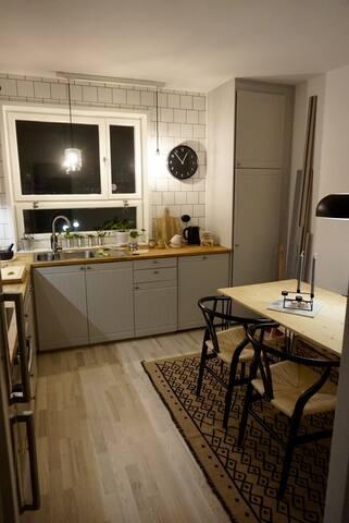 Nyrenoverad lägenhet 20min från sthml Centrum
