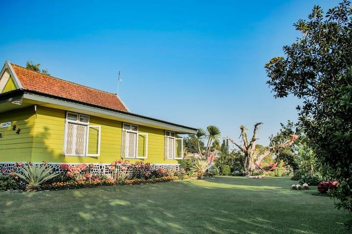 Villa Cemara Tiga