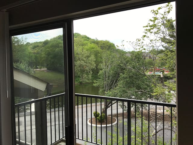 Bellevue Duck Crossing - Nashville - Appartement