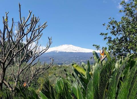 Casa con giardino Pepe rosa - Taomina, Etna & sea