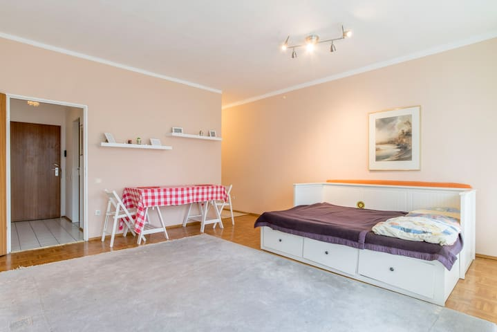 ID 5857 1 room apartment wifi - Garbsen - Appartement