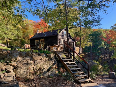 Secluded hilltop cabin + private waterfall