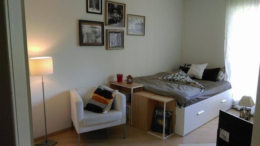 1.5 Room Apartment in the center of Zürich - Zürich - Apartment