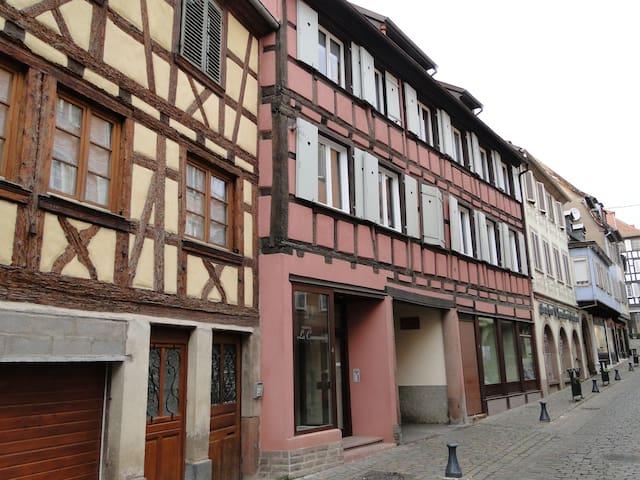 **Beau Loft au coeur de l'Alsace,BARR  ** 阿尔萨斯房子** - Barr - อพาร์ทเมนท์