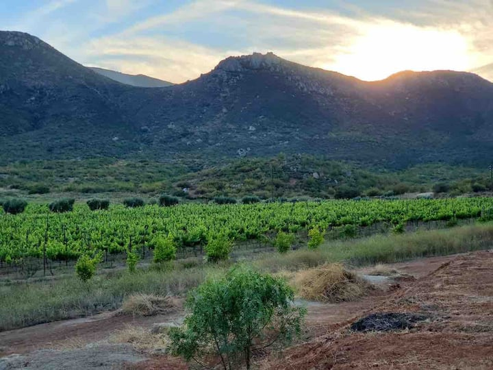 RUTA/VdG Vineyard, Winery & Event Space Guesthouse