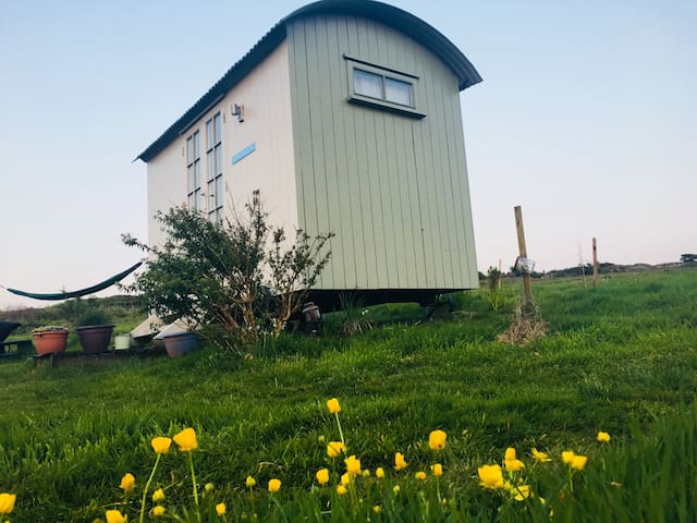 St.Ives: Magnificent Shepherd Huts by the sea