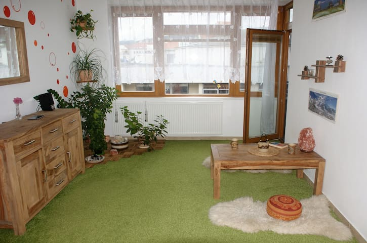 Harmonious flat in Pisek incl. undeground parking - Písek - Leilighet