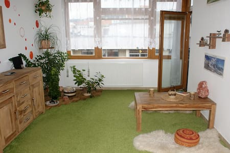 Harmonious flat in Pisek incl. undeground parking - Písek - Квартира