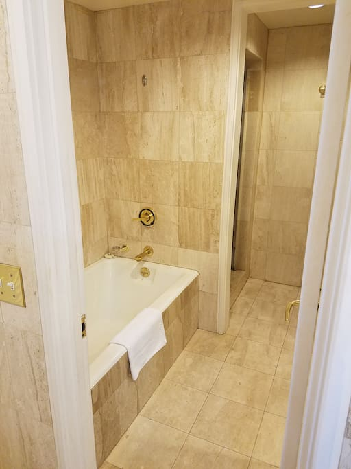 Great Soaking tub with Walk in Shower on other side of Marble wall.