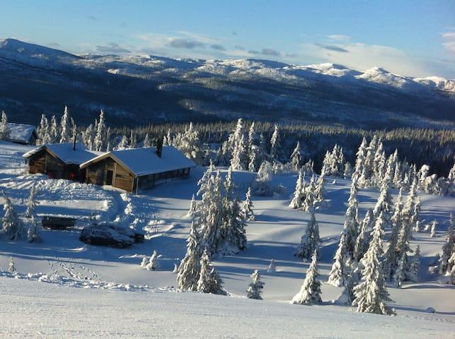 Stor Ål hytte - passer to famileier