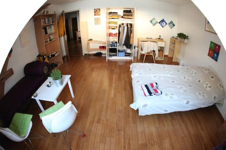 Warm spacious room in a cosy appartment - Basel