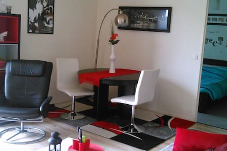 50M2 4 pers /train /CDG/euro2016 - Appartement