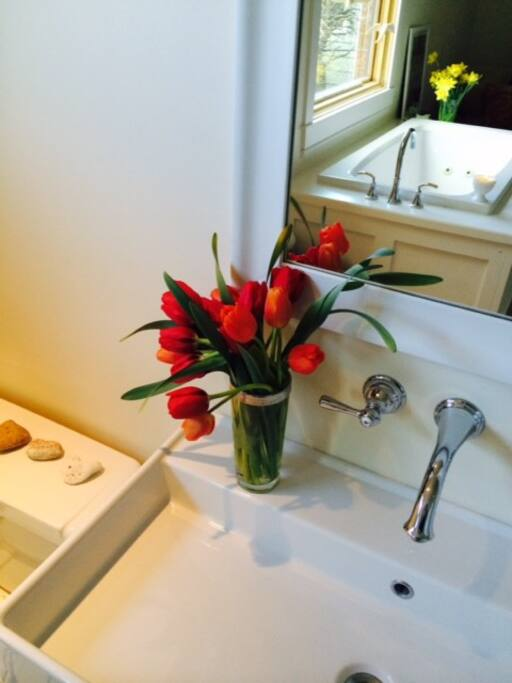 spa bathroom in master bedroom