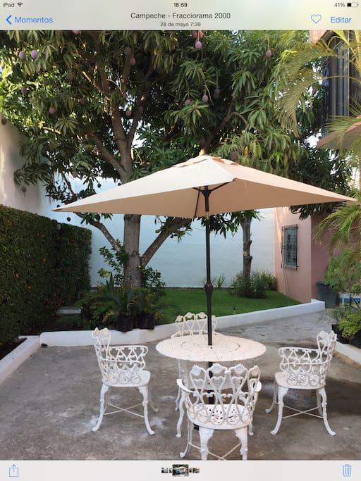 Jardin agradable, cómodo y relajante con iluminación