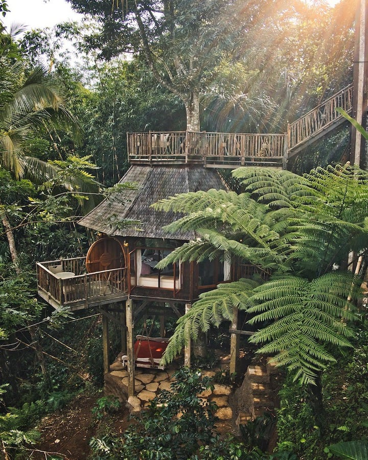 Hobbit Treehouse nestled in tropical jungle w/view