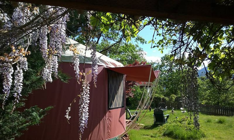 Sunset View Yurt in Applegate Valley Wine Country - Grants Pass - Yurta