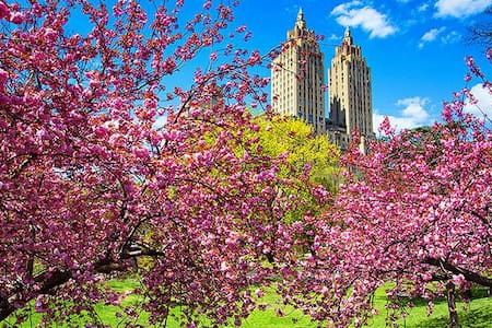 ♥ Central Park - Broadway ♥ - New York - Lejlighed