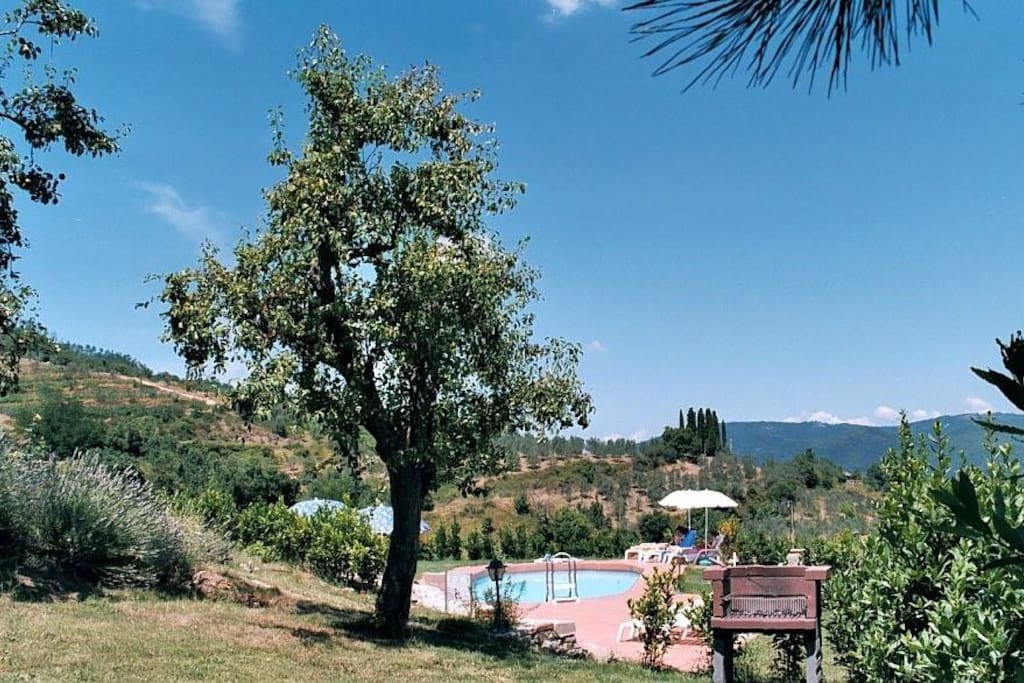 Picina view to pool