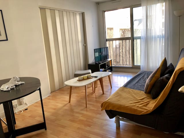 APPARTEMENT 50M2 PARIS 15 NEAR TO THE EIFFEL TOWER