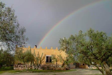 Castell dels Angels, chalet en el Delta - L'Aldea