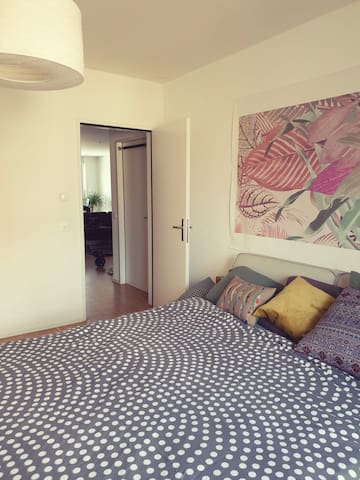 Spacious apartment right in the centre of Fribourg