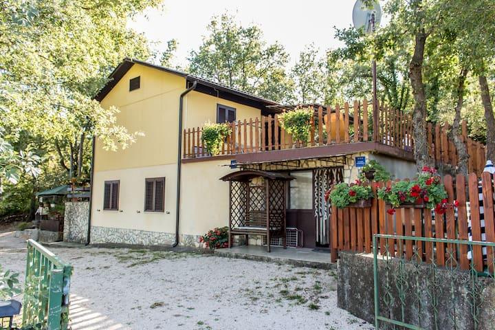 Apartment Marija 1 - Risika - Apartment