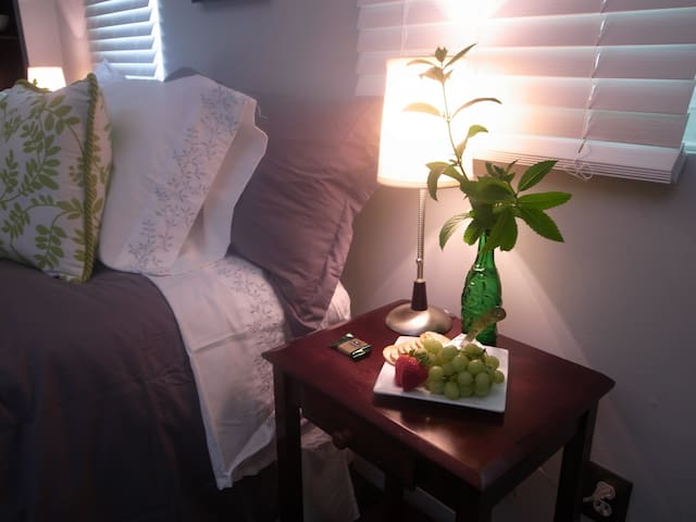 King Salmon Suite - Anchorage - Appartement