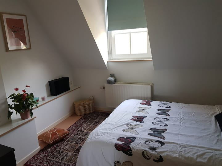 Cozy room in a green area/ European district