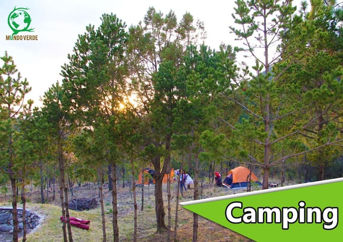 Camping Mundo Verde, Los Lirios, Coahuila.