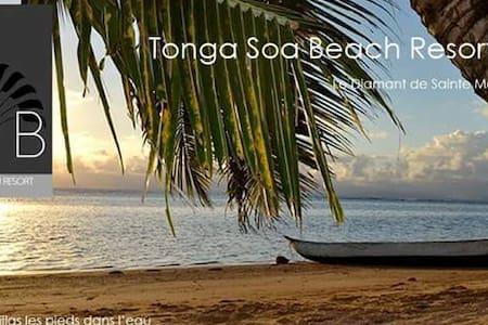 Tongasoabeach   Villa  Vanille