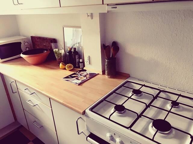 Cosy quiet apartment in the heart of Copenhagen