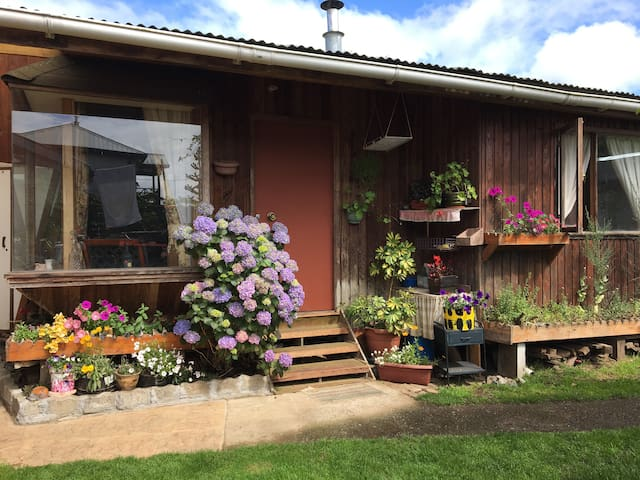 Cottage with flowered garden