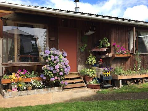 Cottage with flowered garden