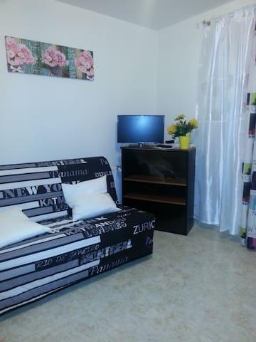 isabelle 5 - Dijon - Appartement