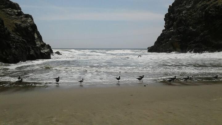 Asia, Playa Chocalla. Full verano.