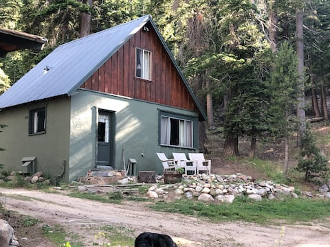 Vintage Mammoth Cabin in the Woods