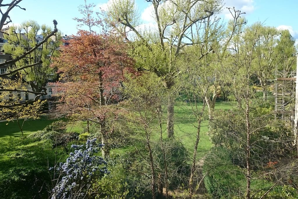 View from the kitchen onto the communal gardens