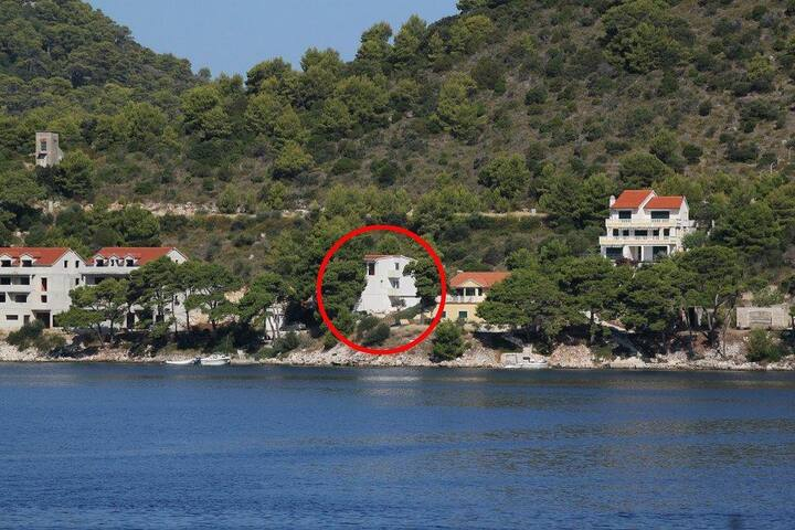 Two bedroom apartment near beach Pasadur, Lastovo (A-8388-b) - Pasadur - Wohnung