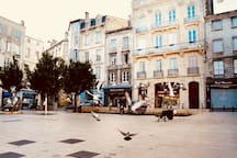 Appartement place Fernand lafargue