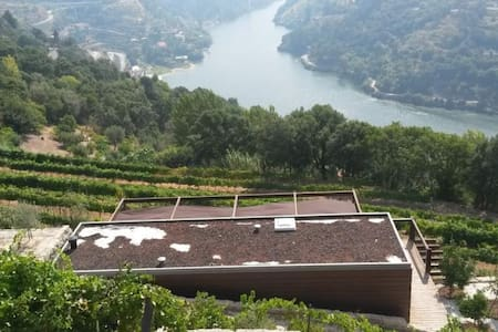 Lovely cabin in Douro's vineyards 2